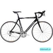 Cyclelink (COJ231698)