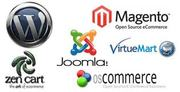 CMS Development,  Content Management System India